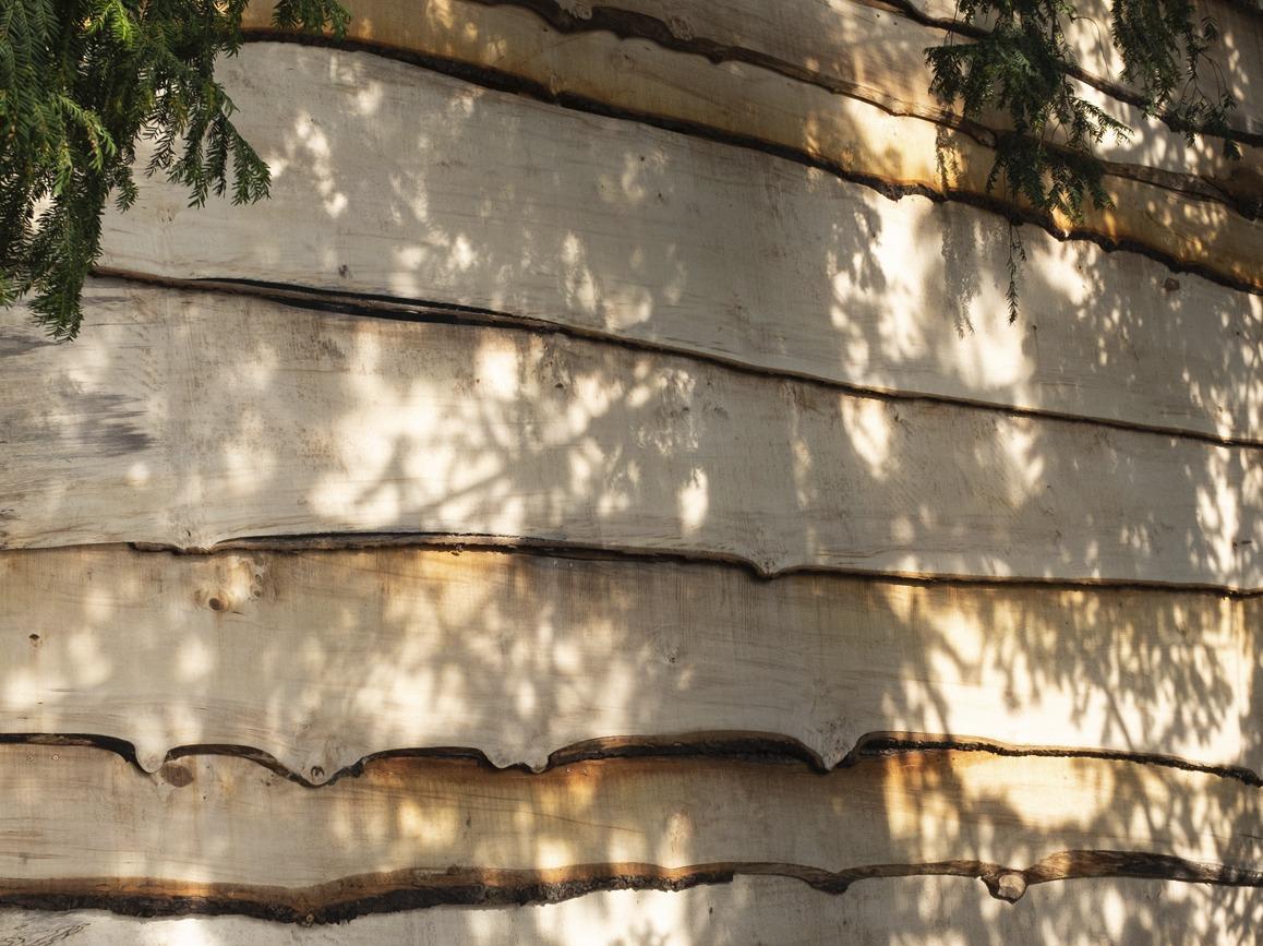 Photo du projet The green door project de Les étudiant·e·s de la HEAD – Genève